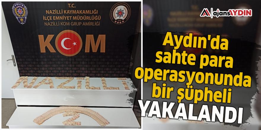 Aydın'da sahte para operasyonunda bir şüpheli yakalandı