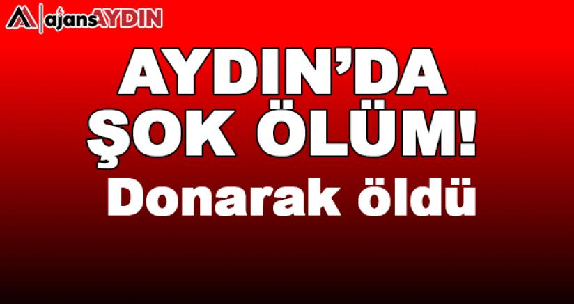 Aydın'da şok ölüm