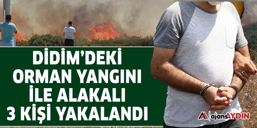 Didim'deki orman yangını ile alakalı 3 kişi yakalandı