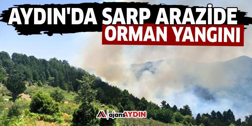 Aydın'da sarp arazide orman yangını