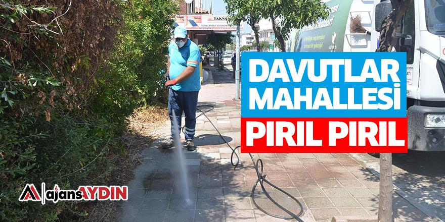 DAVUTLAR MAHALLESİ PIRIL PIRIL