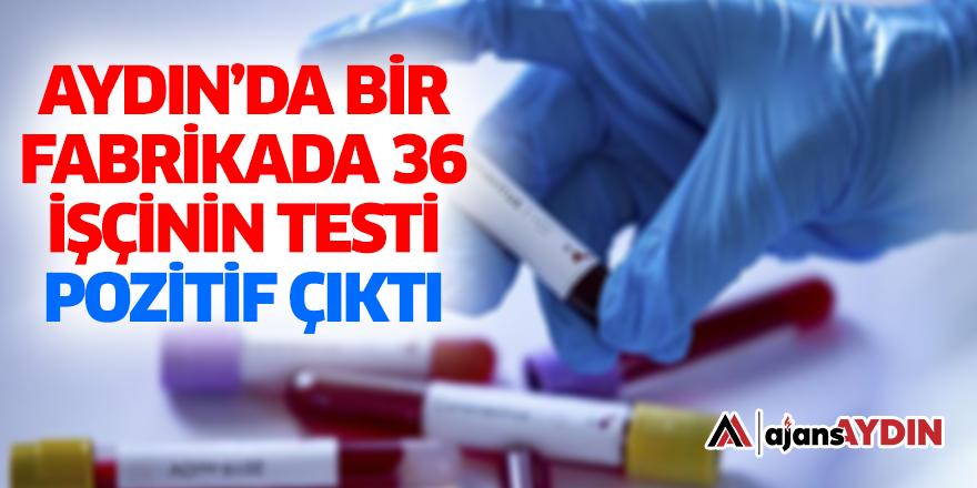 Aydın'da bir fabrikada 36 işçinin testi pozitif çıktı
