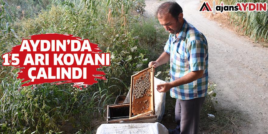 Aydın'da 15 arı kovanı çalındı