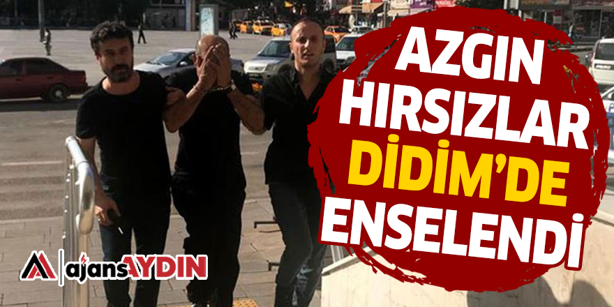 AZGIN HIRSIZLAR DİDİM'DE ENSELENDİ