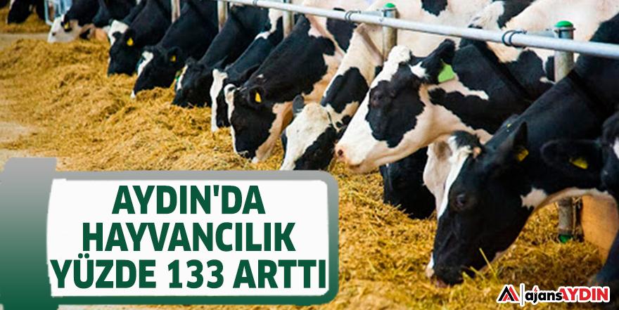 AYDIN'DA HAYVANCILIK YÜZDE 133 ARTTI